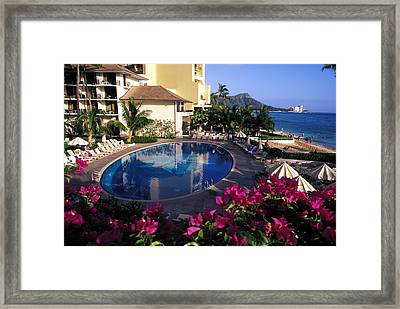 Orchid Pool At Halekulani Framed Print by Carl Purcell