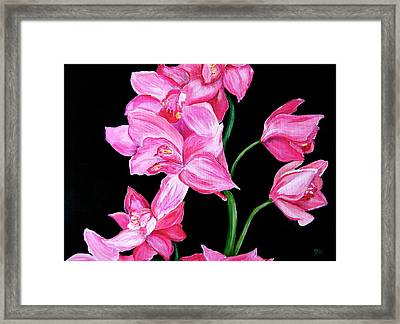 Orchids Framed Print by Debi Starr