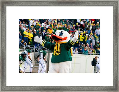 Oregon Ducks Mascot Puddles At Autzen Stadium Framed Print by Joshua Rainey