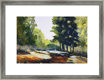 Oregon Trail Framed Print by Nancy Merkle