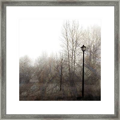 Oregon Winter Framed Print by Carol Leigh