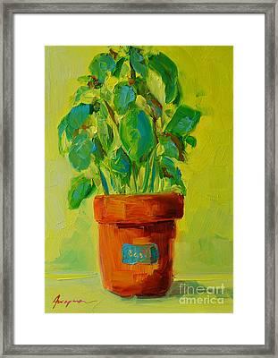 Organic Basil Plant Still Life Framed Print by Patricia Awapara