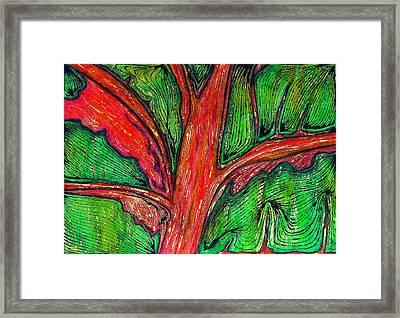 Organic Framed Print by Carla Sa Fernandes