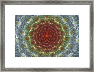 Organic Intricacy Framed Print by Justin Sanchez