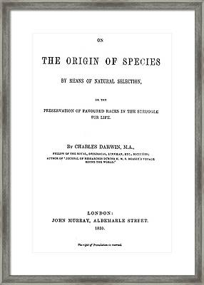 Origin Of The Species 1859 Framed Print by Granger