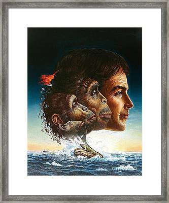 Origins Of Man Framed Print by Publiphoto