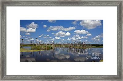 Orlando Wetlands Cloudscape 3 Framed Print by Mike Reid