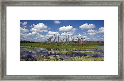Orlando Wetlands Cloudscape Framed Print by Mike Reid