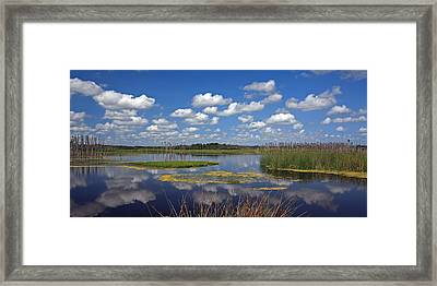 Orlando Wetlands Park Cloudscape 4 Framed Print by Mike Reid