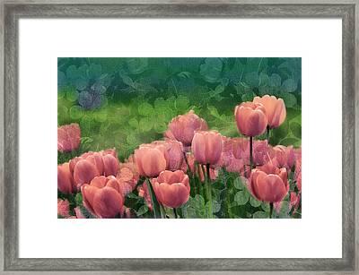Ornamental Garden Framed Print by Georgiana Romanovna