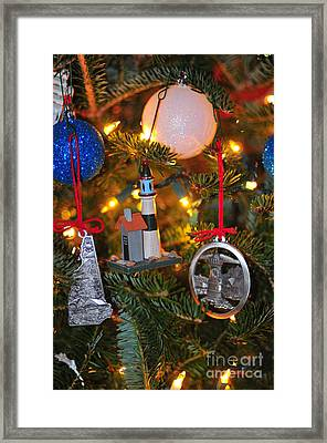 Ornaments  Framed Print by Catherine Reusch  Daley