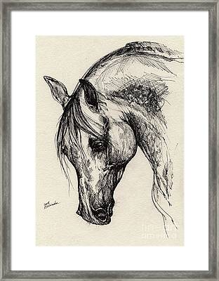 Ostragon Framed Print by Angel  Tarantella