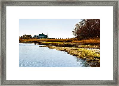 Out Back At Brax Landing Harwich Port Framed Print by Michelle Wiarda