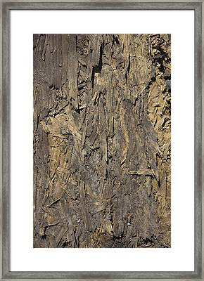 Out Door Ply Wood Tatter Floor  Framed Print by Sirron Kyles