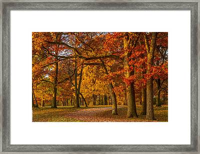 Out For A Stroll Framed Print by Eric Bass