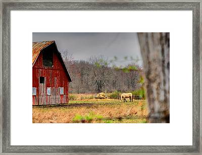 Out In The Country Framed Print by Off The Beaten Path Photography - Andrew Alexander