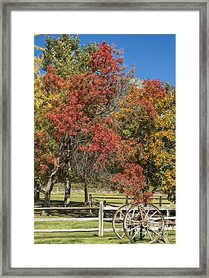 Out In The Country Framed Print by Peggy Hughes