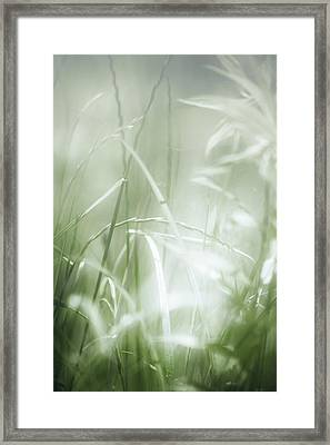 Out Of Focus Framed Print by Vjekoslav Antic
