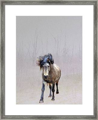 Out Of Nowhere Framed Print by Patricia Keller