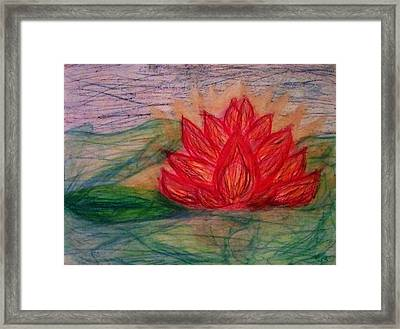 Out Of The Muck Comes The Beauty Framed Print by Thomasina Durkay