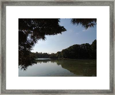 Out Of The Pines Framed Print by Teresa Schomig