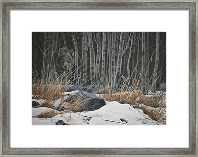 Out Of The Shadows - Wolf Framed Print by Peter Mathios