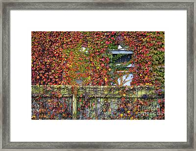 Over The Back Fence Framed Print by Paul W Faust -  Impressions of Light