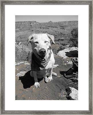 Overlook Framed Print by Kimberly Cohne