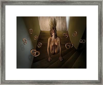 Overlooked View No.28 Framed Print by Matjaz Preseren