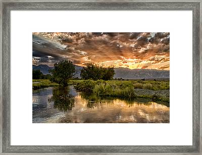 Owens River Sunset Framed Print by Cat Connor