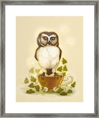 Owl And Teacup Framed Print by Catherine Noel