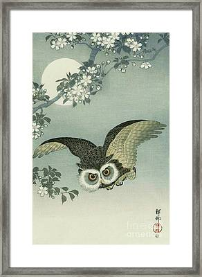 Owl - Moon - Cherry Blossoms Framed Print by Pg Reproductions