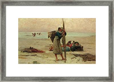 Oyster Catching Framed Print by Pierre Celestin Billet