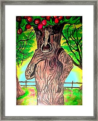 Oz Grumpy Apple Tree Framed Print by Jo-Ann Hayden