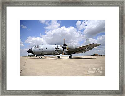 P-3m Orion Of The Spanish Air Force Framed Print by Riccardo Niccoli