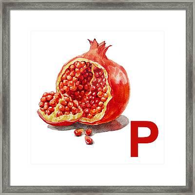P Art Alphabet For Kids Room Framed Print by Irina Sztukowski