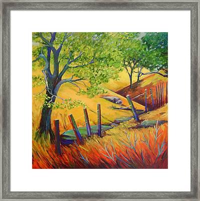 Pacheco Oak Valley Framed Print by Stephanie  Maclean