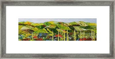 Pageantry Framed Print by Allan P Friedlander