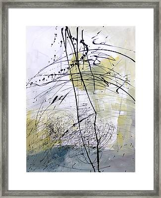 Paint Solo 5 Framed Print by Jane Davies