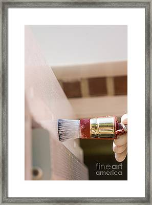 Paintbrush Framed Print by Patricia Hofmeester