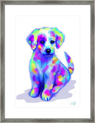 Painted Pup Framed Print by Nick Gustafson