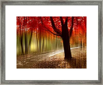 Painted With Light Framed Print by Jessica Jenney