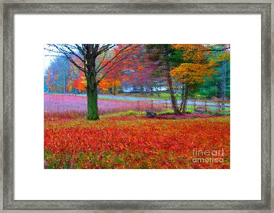 Painting Like Frontyard In Autumn Framed Print by Tina M Wenger