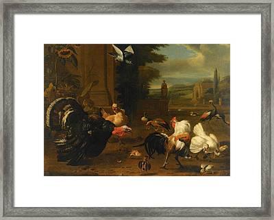 Palace Garden Exotic Birds And Farmyard Fowl Framed Print by Melchior de Hondecoeter
