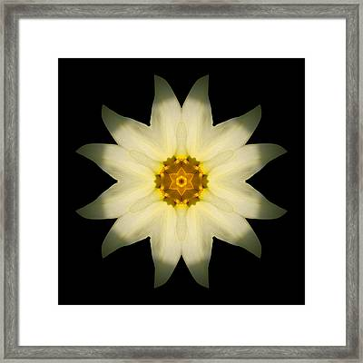 Pale Yellow Daffodil Flower Mandala Framed Print by David J Bookbinder