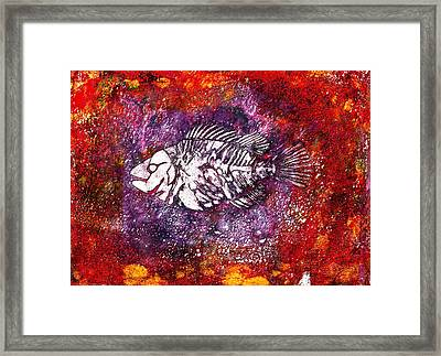 Paleo Fish Framed Print by Bellesouth Studio
