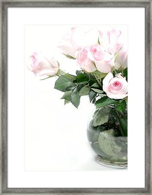 Paler Side Of Pink Framed Print by Diana Angstadt