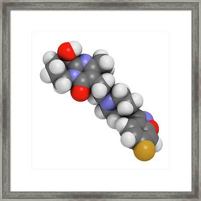 Paliperidone Drug Molecule Framed Print by Molekuul