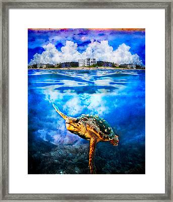 Palm Beach Under And Over Framed Print by Debra and Dave Vanderlaan