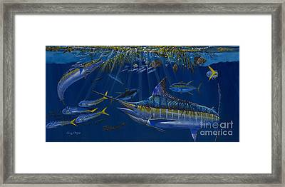 Palm Cover Off00148 Framed Print by Carey Chen